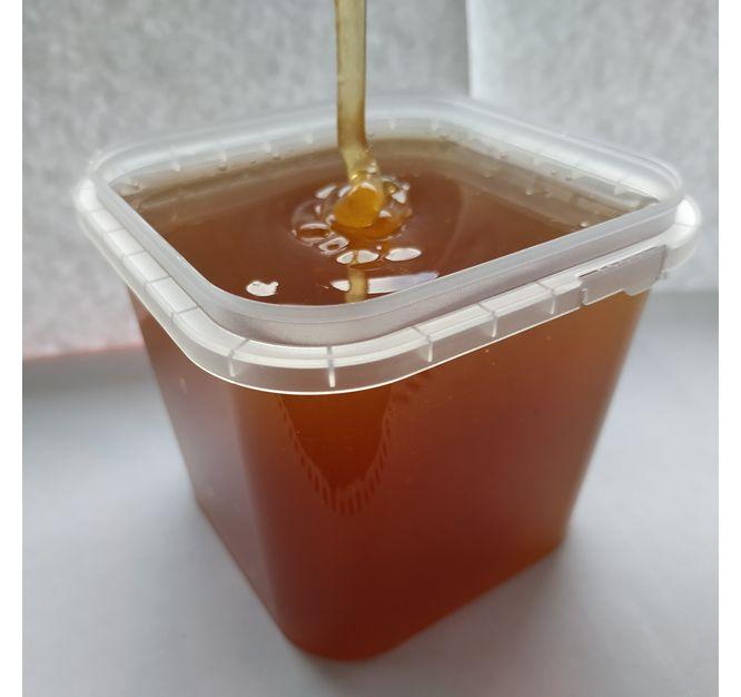 Лесной Мёд 2019 года