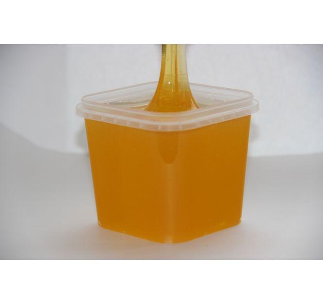 Полевой Мёд 2019 года