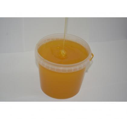 Подсолнечниковый Мёд 2020 года